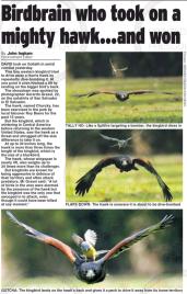 Daily Mail Inglaterra