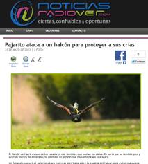 Radio Ver Mexico